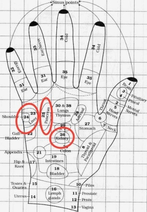 acupressure-points-right-hand-1