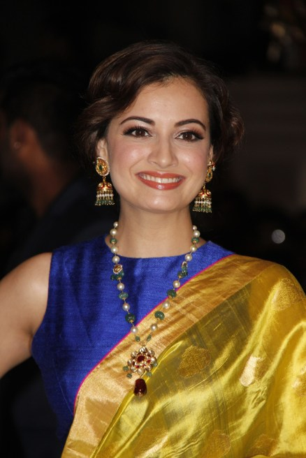 Bollywood-Celebrities-at-Filmfare-Awards-2014-Photos-112